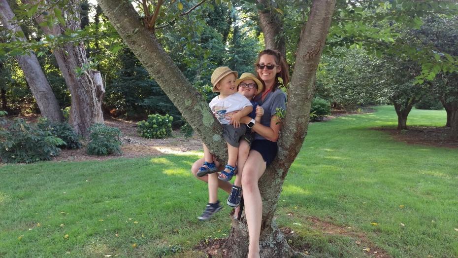 treefamilygraylyn.jpg